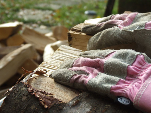 Gloves on the woodpile