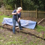 Grace tamping soil into the trench