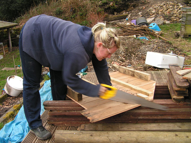 sawing the chicken house