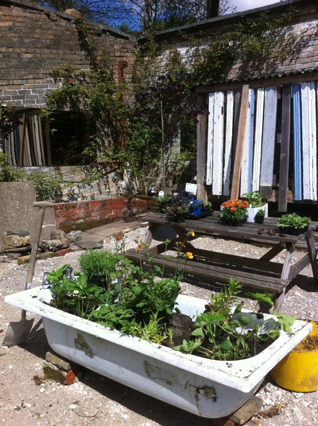 the beautiful bathtub garden