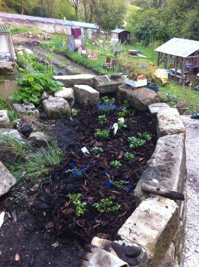 the wall top garden